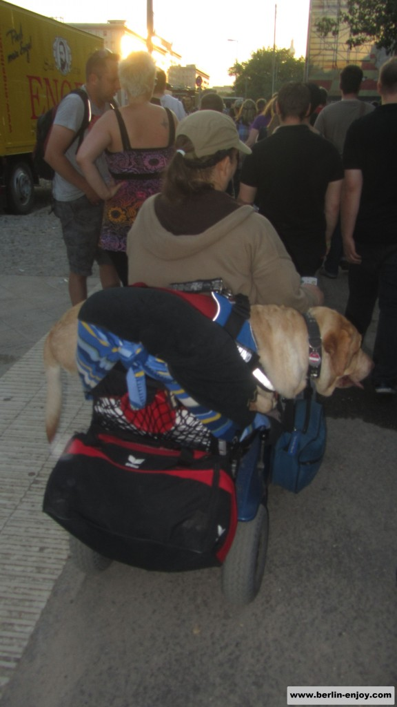 Woman and dog in wheelchair