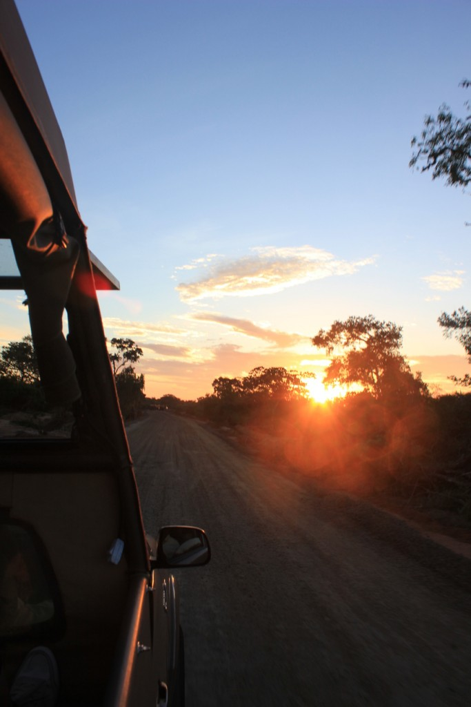 Jeep Sunrise Yala