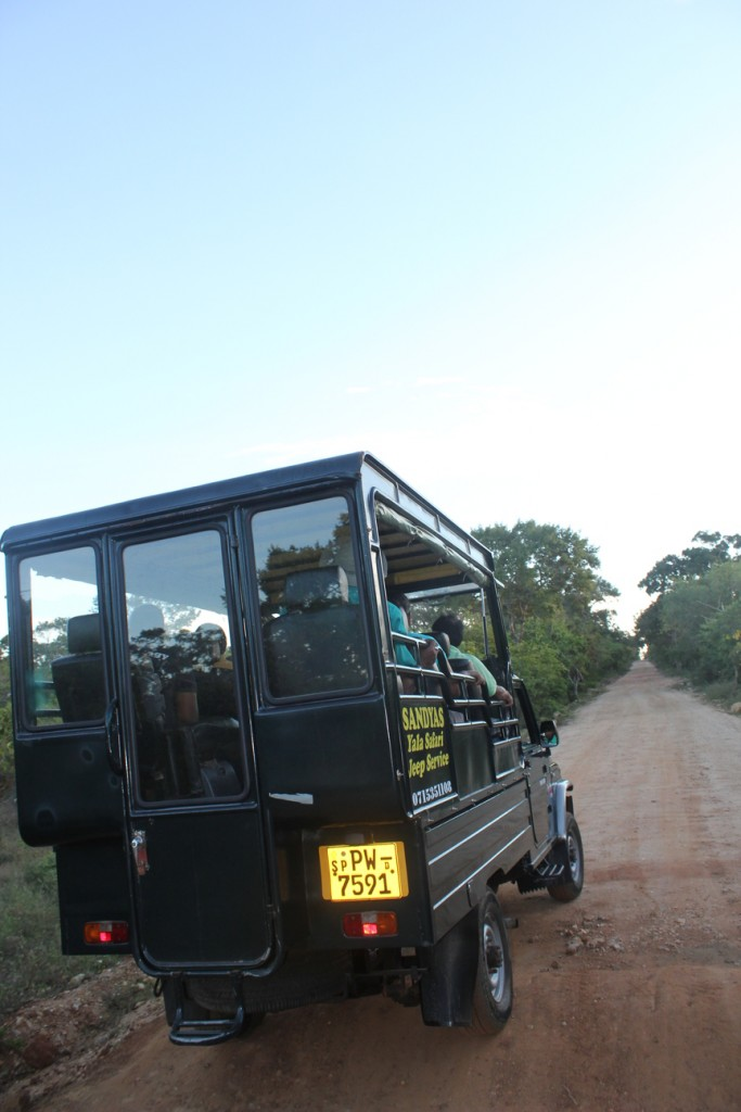 Jeep Yala national park