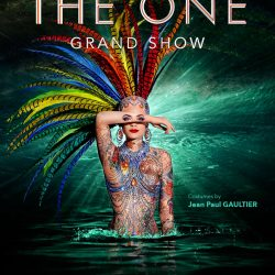 Must-See show in Friedrichstadt-Palast: The One